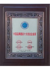 中国品牌建设十大杰出企业家